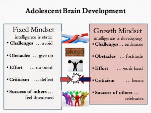 fixed-and-growth-mindset