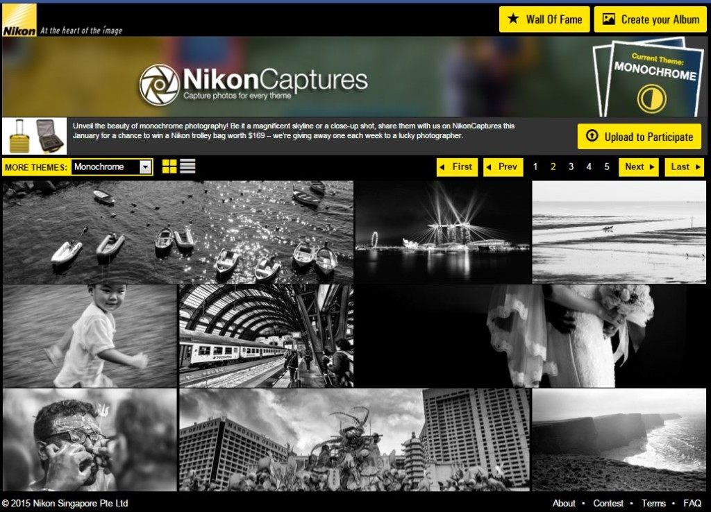Nikon Captures Photo Contest