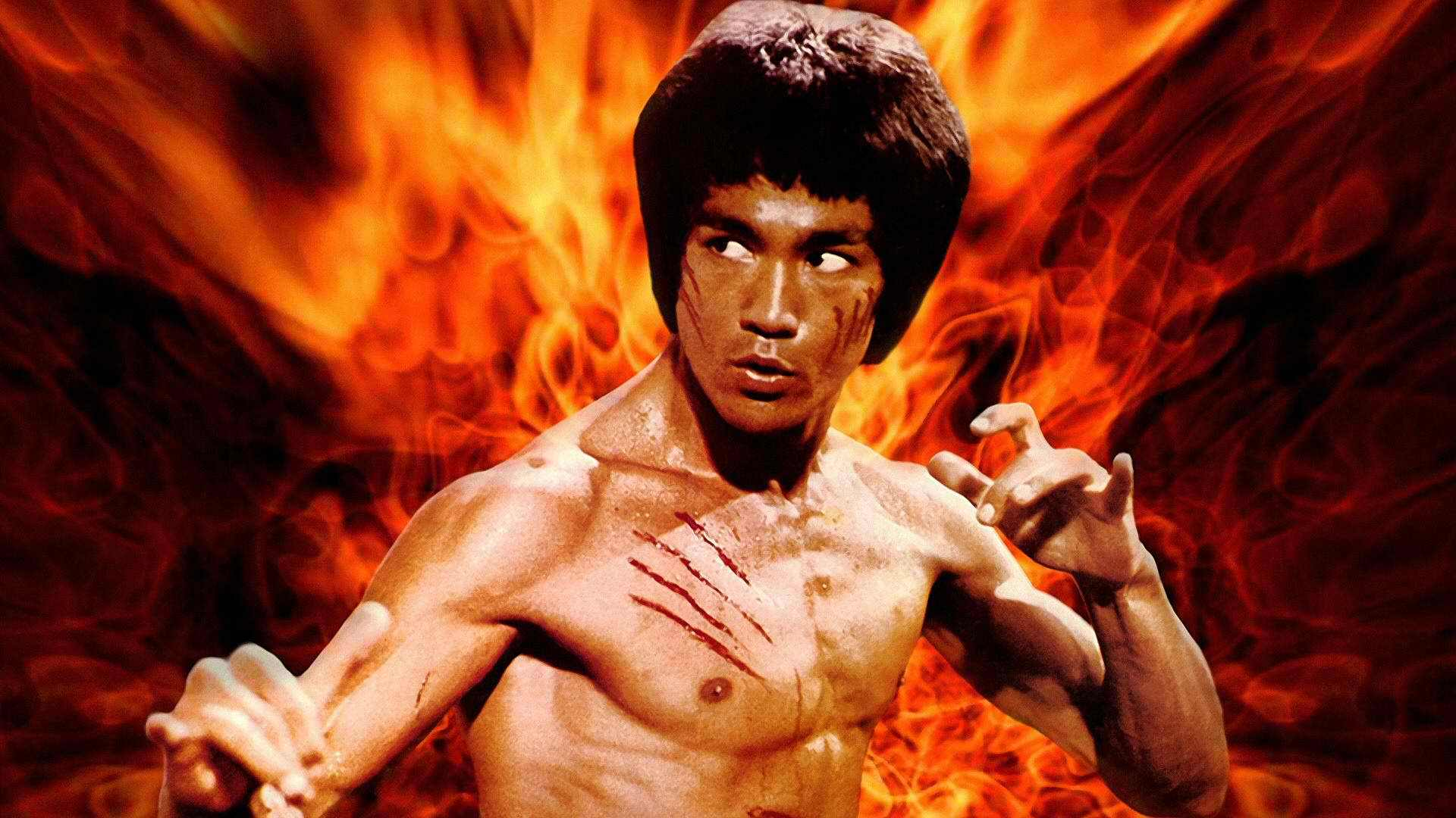 lessons-in-social-media-marketing-from-bruce-lee