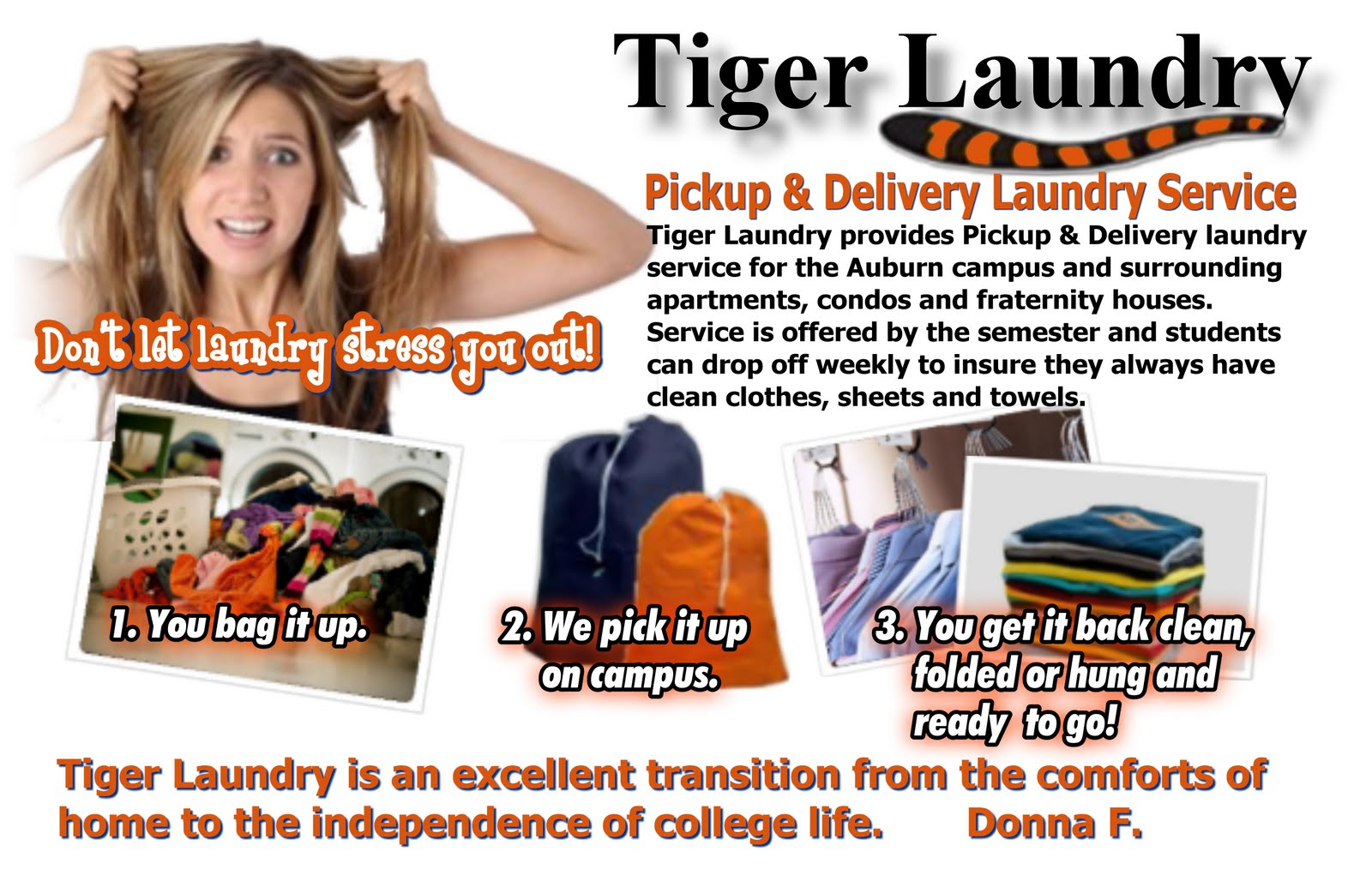 tiger-laundry
